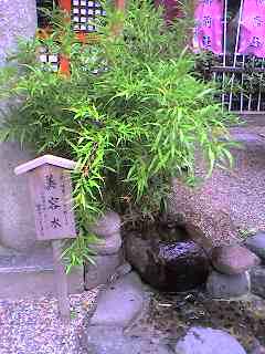 image/animamundi-2006-06-14T20:17:48-1.jpg