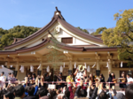 iphone/image-20130203155323.png